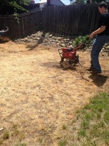 Going to town with the rototiller